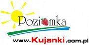Pensjonat Poziomka - Złotów