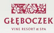 Vine Resort & Spa - Brzozie
