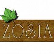 Pensjonat Zosia - Muszyna