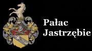 Pałac Jastrzębie - Drzycim